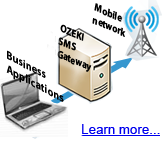SMS business applications